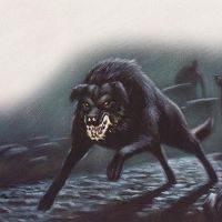 Black Dogs and Demonic Hounds