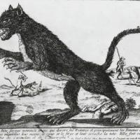The Beast of Gévaudan